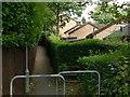 SK5554 : Footpath in Ravenshead by Alan Murray-Rust