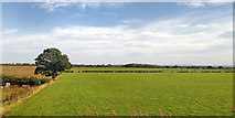 NZ2911 : Fields north of Hurworth-on-Tees by Robin Webster
