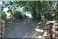 TQ1396 : Path to Patchetts Green by David Howard
