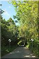 SX6253 : Lane through Tod Moor by Derek Harper