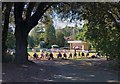 SZ5880 : Brass band concert at Rylstone Gardens by Paul Coueslant