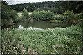 SE7566 : Pond, Coldwell Plantation by Mick Garratt