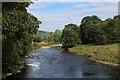 SE0753 : River Wharfe at Bolton Abbey by Chris Heaton