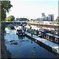 TQ3883 : Three Mills Green Vicinity, Bow, London, E3 by David Hallam-Jones