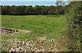 SX6454 : Field by Caton House by Derek Harper