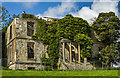 W2789 : Ireland in Ruins Pt II: Mount Leader House, Co. Cork (3) by Mike Searle