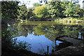 SK0610 : Botts Pond by Bill Boaden