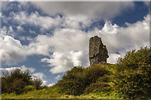 R2445 : Castles of Munster: Shanid, Limerick (1) by Mike Searle