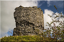 R2445 : Castles of Munster: Shanid, Limerick (3) by Mike Searle
