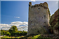 S1126 : Castles of Munster: Moorstown, Tipperary - revisited (7) by Mike Searle