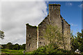 W9698 : Castles of Munster: Ballyduff, Waterford - revisited (6) by Mike Searle