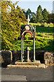 NY7843 : The Bainbridge Fountain by Trevor Littlewood