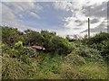 NJ2344 : Newlands ROC Underground Bunker by valenta