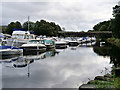NS3981 : River Leven at Balloch by David Dixon