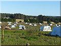 NJ2963 : Pig farm near Urquhart by Alan Murray-Rust
