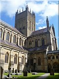 ST5545 : Wells Cathedral [5] by Michael Dibb