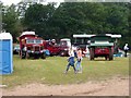 SO7971 : Stourport Steam Rally by Chris Allen