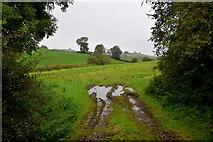H6056 : Wet field, Annaghilla by Kenneth  Allen