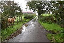 H5956 : Hidden drain along Sess Road by Kenneth  Allen