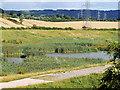 SO8618 : Horseshoe Brook Flood Storage area by David Dixon