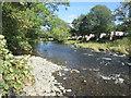 NT5316 : Over  River  Teviot  to  Riverside  Caravan  Park by Martin Dawes