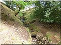 SD9526 : Birks Clough by Stephen Craven