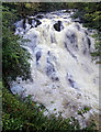 SH7657 : Swallow Falls in full flow by Andy Stephenson