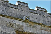 SK4665 : Ault Hucknall, St. John the Baptist Church: Gargoyle 2 by Michael Garlick