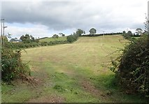 H8920 : Harvested drumlin hay field on the Kiltybane Road by Eric Jones