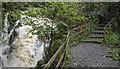 J4681 : Waterfall, Crawfordsburn by Rossographer