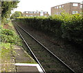 ST1580 : East along the Coryton Line from Whitchurch (Cardiff) railway station by Jaggery