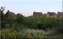 TL0146 : Houses by The Branston Way, Kempston by David Howard