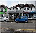 ST1581 : Coco in Rhiwbina, Cardiff by Jaggery