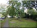 TQ3681 : Former Stepney Meeting Burial Ground, White Horse Road by Marathon