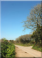 SX7746 : Lane leaving Cole's Cross by Derek Harper