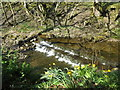 NY9038 : Small waterfall on Middlehope Burn by Mike Quinn