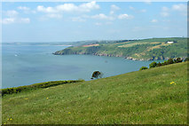 SX9049 : View across mouth of River Dart by Robin Webster