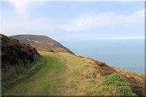 SS6549 : East Cleave headland from across the Heddon valley by Martin Tester