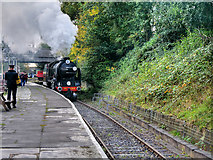 SD8010 : Steam Locomotive Repton Arriving at Bury by David Dixon