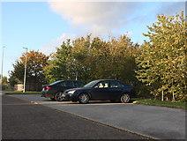 TQ5872 : Parking spaces on Bean Lane by David Howard