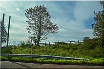 SD4953 : Ellel : M6 Motorway Roadside by Lewis Clarke