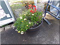 TL9033 : Floral Display at Bures Railway Station by Geographer