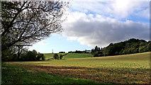 SO8398 : Staffordshire farmland south-east of Pattingham by Roger  Kidd