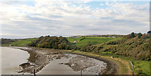 NT9953 : North side of River Tweed above Berwick by Robin Webster