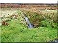 NZ0350 : Moorland stream beside the Edmundbyers road by Robert Graham
