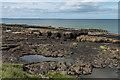 NU1735 : Near Blackrocks Point by Ian Capper