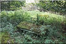 NT5570 : Old Gravestones in Baro Kirkyard (2) by Anne Burgess