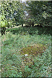 NT5570 : Old Gravestones in Baro Kirkyard (4) by Anne Burgess