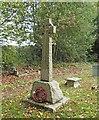 TG3109 : Witton War Memorial by Adrian S Pye