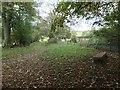 NY5245 : Sandstone bench at Bascodyke Foot by Christine Johnstone